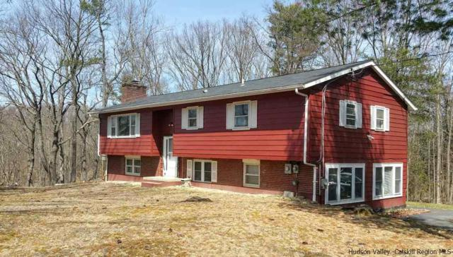 3 Bud Street, New Paltz, NY 12561 (MLS #20181249) :: Stevens Realty Group