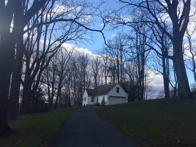 157 Rosa Lane, Hurley, NY 12443 (MLS #20181295) :: Stevens Realty Group