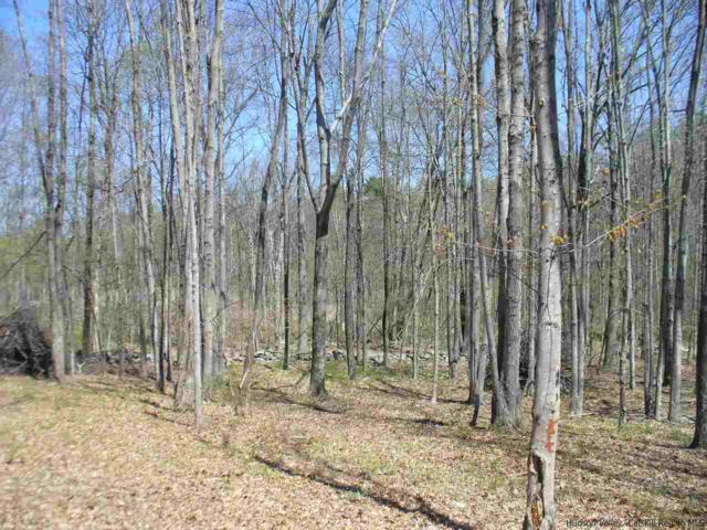 115 Dashville Rd, Esopus, NY 12429 (MLS #20181322) :: Stevens Realty Group