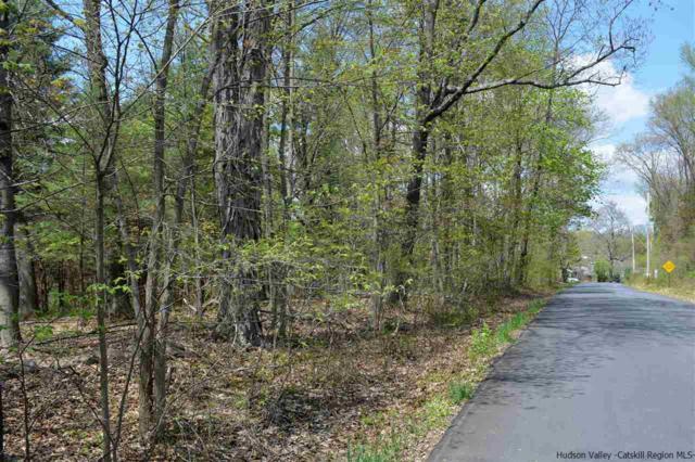 TBD Old Kings Highway, Stone Ridge, NY 12484 (MLS #20181672) :: Stevens Realty Group
