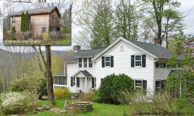 254 Upper Boiceville Road, Boiceville, NY 12412 (MLS #20181702) :: Stevens Realty Group