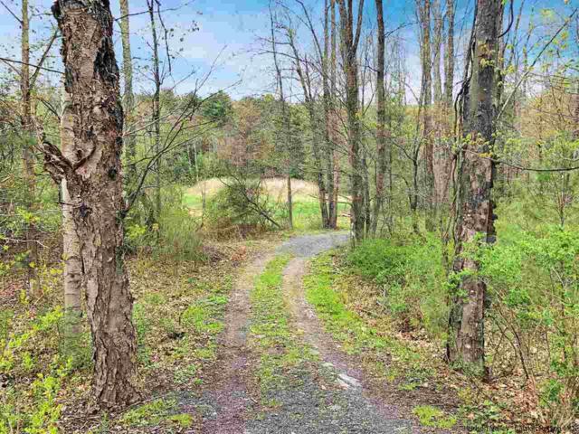 3664 Route 212, Woodstock, NY 12498 (MLS #20181731) :: Stevens Realty Group