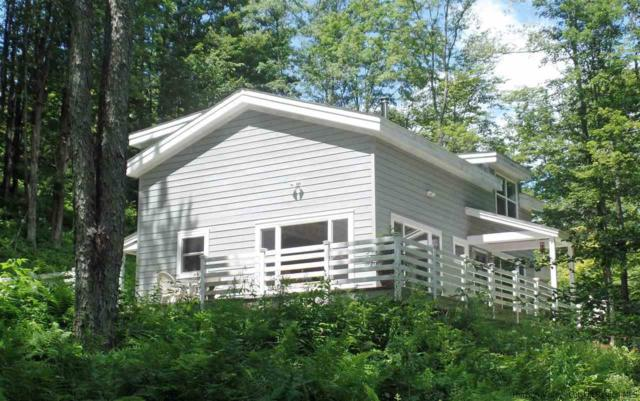 1759 Russell Road, Franklin, NY 13856 (MLS #20181753) :: Stevens Realty Group
