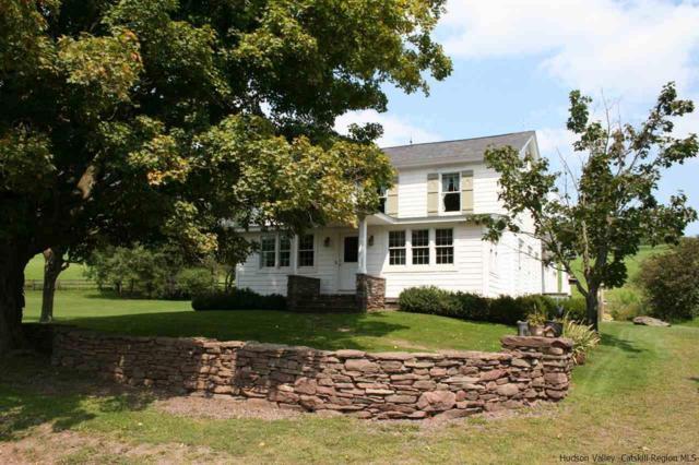 1660 Dry Brook Road, Meredith, NY 13806 (MLS #20181823) :: Stevens Realty Group