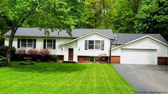 58 Hickory Hollow Drive, Catskill, NY 12463 (MLS #20181893) :: Stevens Realty Group