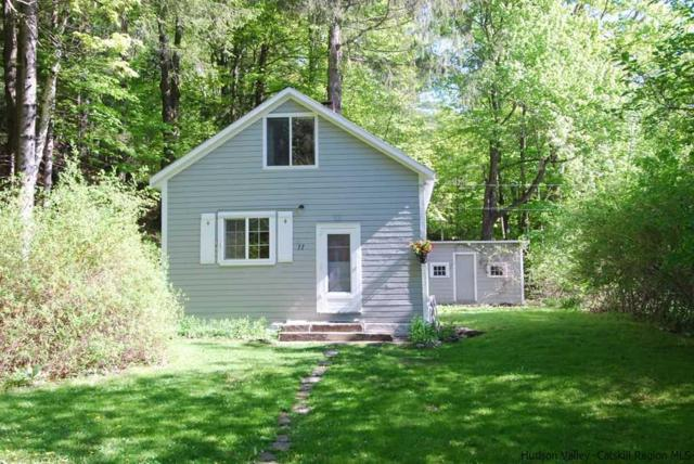 77 Silver Hollow, Willow, NY 12494 (MLS #20181929) :: Stevens Realty Group