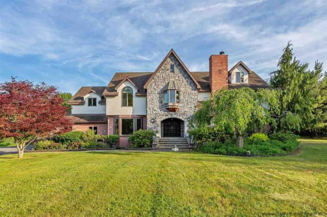 15 Trout Creek Road, Clermont, NY 12526 (MLS #20182487) :: Stevens Realty Group