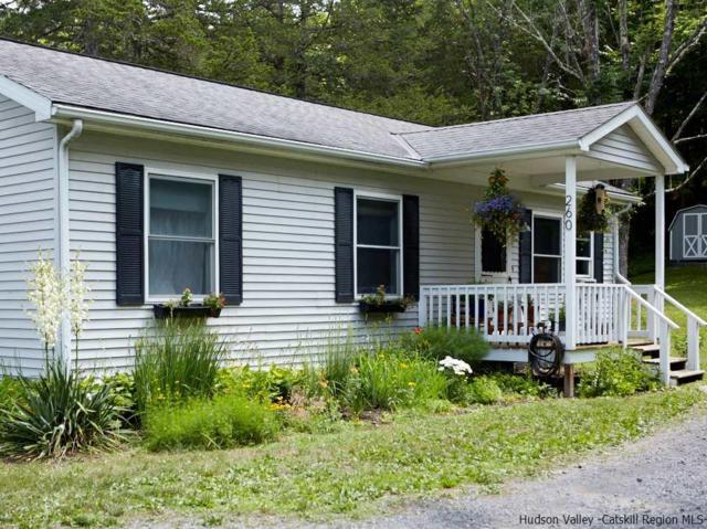260 State Route 32 N, New Paltz, NY 12561 (MLS #20182850) :: Stevens Realty Group