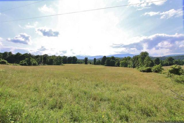 TBD Old Kings Highway, Saugerties, NY 12477 (MLS #20183535) :: Stevens Realty Group