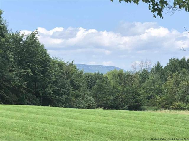 4 Misty Ridge, Gardiner, NY 12528 (MLS #20183587) :: Stevens Realty Group