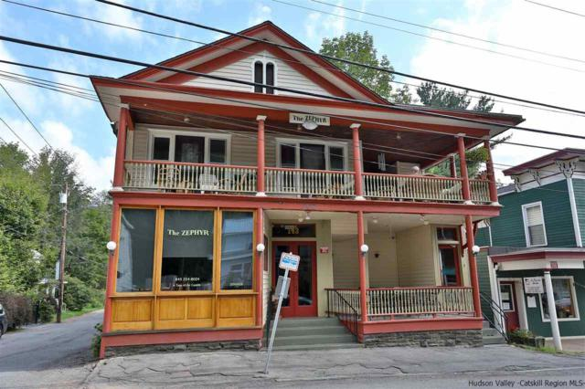 302 Main Street, Pine Hill, NY 12465 (MLS #20183869) :: Stevens Realty Group