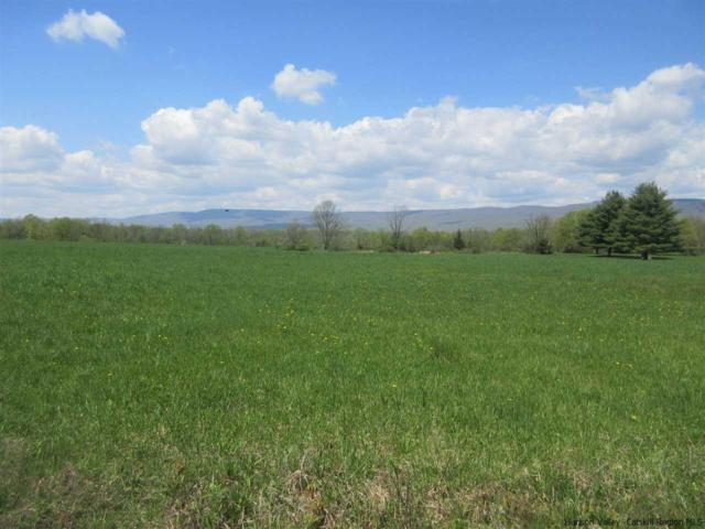 TBD Old Hoagerburgh, Wallkill, NY 12589 (MLS #20183925) :: Stevens Realty Group