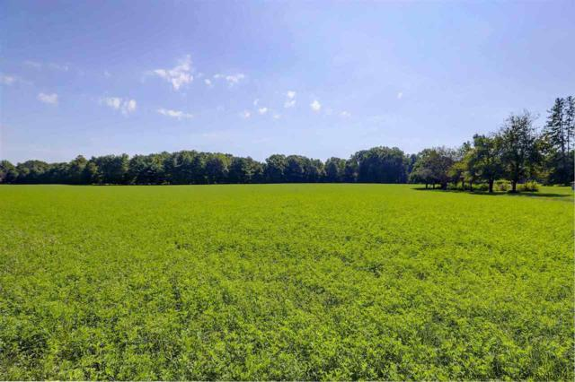 TBD Red Mills Road, Wallkill, NY 12589 (MLS #20183926) :: Stevens Realty Group