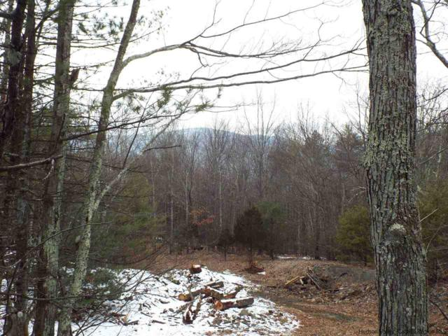 LOT 2 Brink Road, Saugerties, NY 12477 (MLS #20184023) :: Stevens Realty Group