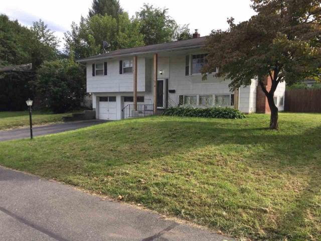 54 Lamb Avenue, Saugerties, NY 12477 (MLS #20184082) :: Stevens Realty Group