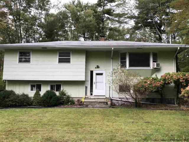 109 N Simmons Drive, Woodstock, NY 12498 (MLS #20184246) :: Stevens Realty Group