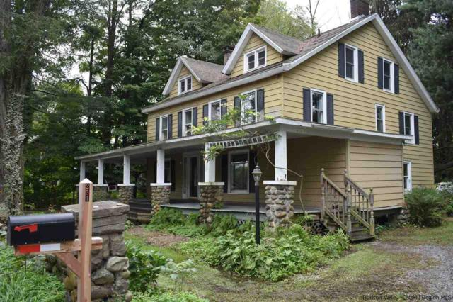 251 Springtown Road, New Paltz, NY 12561 (MLS #20184269) :: Stevens Realty Group