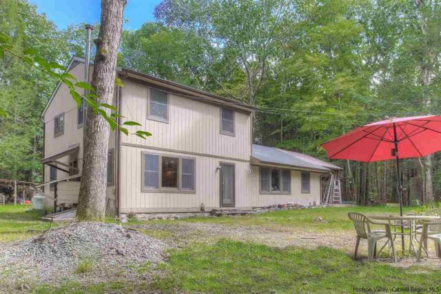 28 Timber Notch Trail, Woodstock, NY 12498 (MLS #20184362) :: Stevens Realty Group