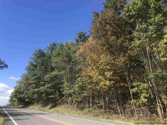197 Route 299 W, New Paltz, NY 12561 (MLS #20184423) :: Stevens Realty Group