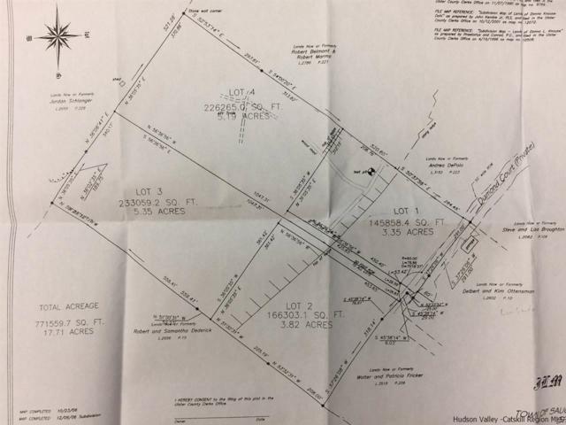 Lot 1 Diamond, Saugerties, NY 12477 (MLS #20184425) :: Stevens Realty Group
