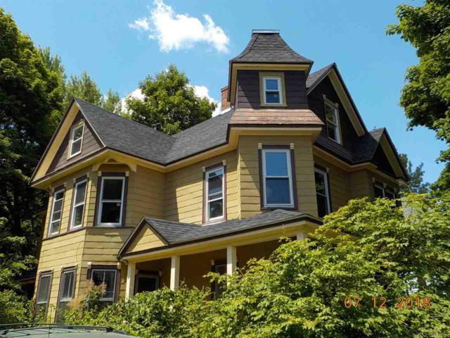 20 Woodbridge Ave, Chatham, NY 12037 (MLS #20184616) :: Stevens Realty Group
