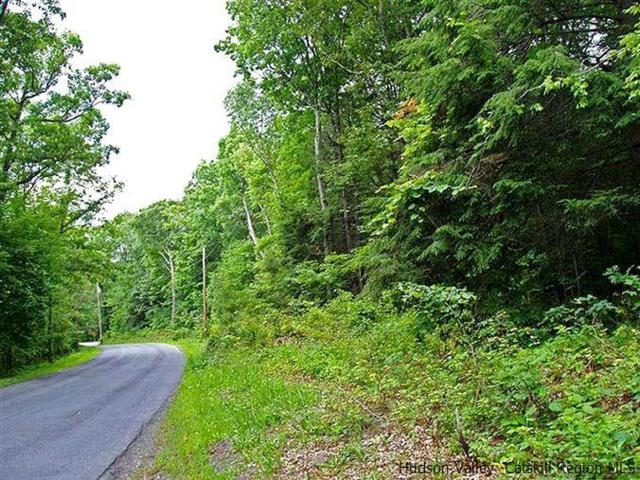 T/B/D Route 28, Hurley, NY 12443 (MLS #20184743) :: Stevens Realty Group