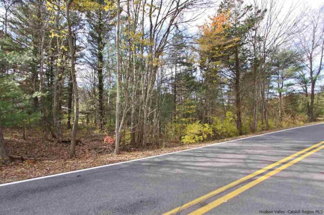Hallihan Hill Road, Kingston, NY 12401 (MLS #20184746) :: Stevens Realty Group