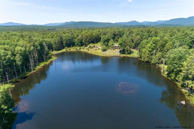 Eastwoods, Woodstock, NY 12498 (MLS #20184889) :: Stevens Realty Group
