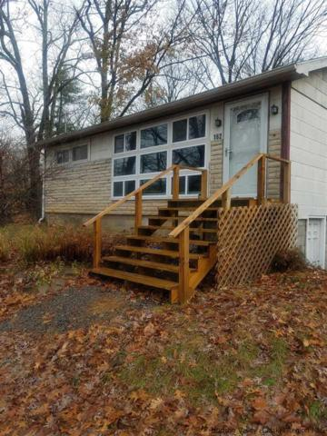 162 Potter Hill Rd, Saugerties, NY 12401 (MLS #20184946) :: Stevens Realty Group