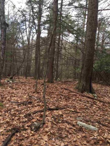 TBD Angus Lane, Woodstock, NY 12498 (MLS #20190062) :: Stevens Realty Group