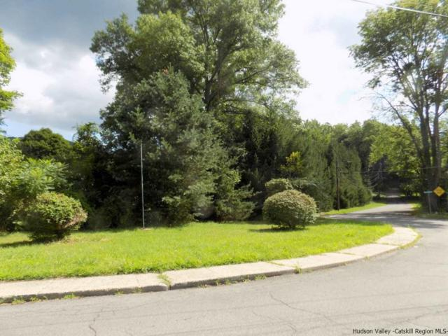 2 Roslyn, Ellenville, NY 12428 (MLS #20190074) :: Stevens Realty Group