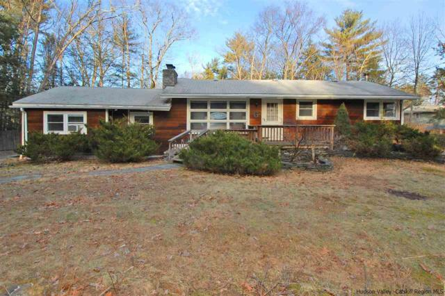 6 Violet Place, Woodstock, NY 12498 (MLS #20190255) :: Stevens Realty Group