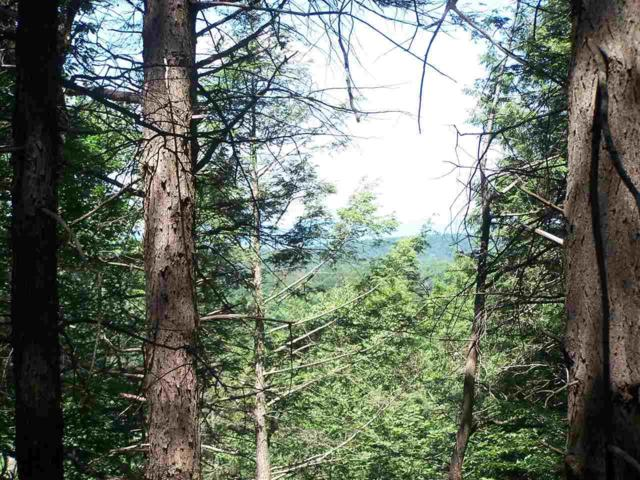 40 Timberline Trail, Esopus, NY 12429 (MLS #20190286) :: Stevens Realty Group