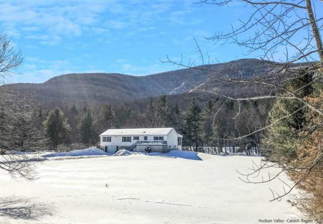 5307 Route 28, Mt Tremper, NY 12457 (MLS #20190389) :: Stevens Realty Group
