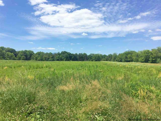 1691 Nys Route 385, Athens, NY 12015 (MLS #20190449) :: Stevens Realty Group