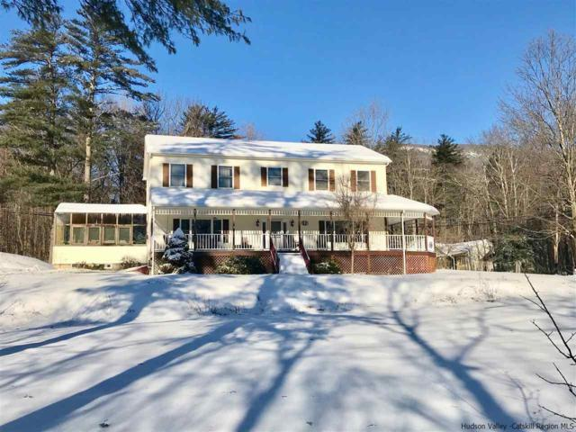 5 Club House Road, Saugerties, NY 12477 (MLS #20190482) :: Stevens Realty Group