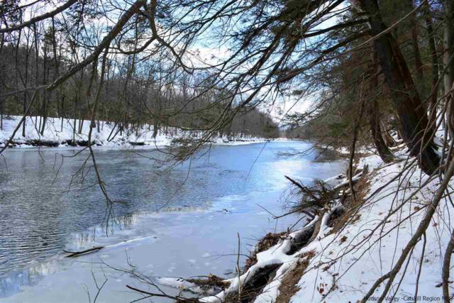 TBD Evers Lane, High Falls, NY 12440 (MLS #20190492) :: Stevens Realty Group