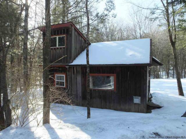 259 Silver Hollow, Woodstock, NY 12495 (MLS #20190527) :: Stevens Realty Group