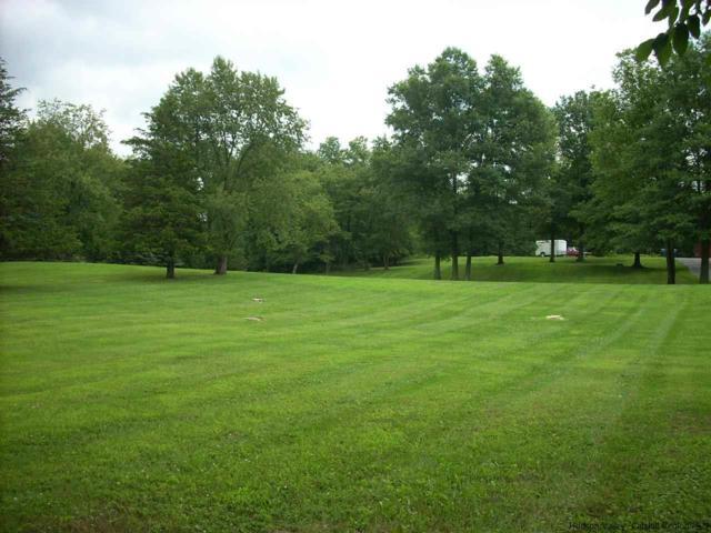 110 Dubois, New Paltz, NY 12561 (MLS #20191301) :: Stevens Realty Group