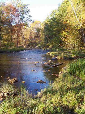 72 Indian Spring Road, Catskill, NY 12414 (MLS #20191952) :: Stevens Realty Group