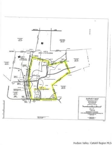 484 Mill Hook Road, Accord, NY 12404 (MLS #20200490) :: Barbara Carter Team