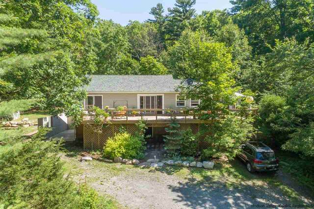 317 S Gully Road, Cragsmoor, NY 12420 (MLS #20202489) :: The Home Team