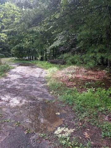 410 SW Cold Brook Road, Woodstock, NY 12498 (MLS #20204066) :: Barbara Carter Team