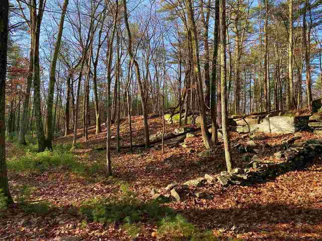 709 Lapla, Stone Ridge, NY 12484 (MLS #20205047) :: Barbara Carter Team