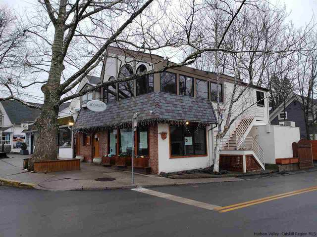 51 Tinker, Woodstock, NY 12498 (MLS #20210146) :: Barbara Carter Team