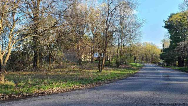 6 Old Mill Rd, New Paltz, NY 12561 (MLS #20210384) :: Barbara Carter Team