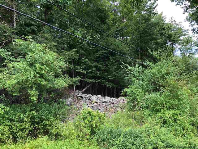 TBD Ohayo Mountain, Woodstock, NY 12498 (MLS #20210391) :: The Clement, Brooks & Safier Team