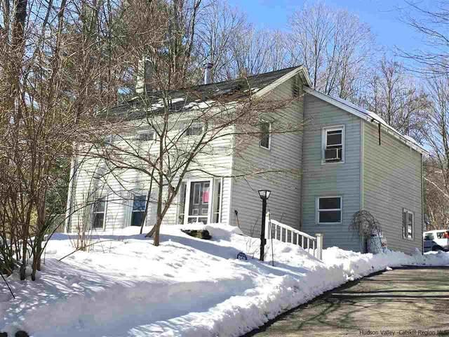500 Pine Bush Rd., Stone Ridge, NY 12484 (MLS #20210756) :: Barbara Carter Team