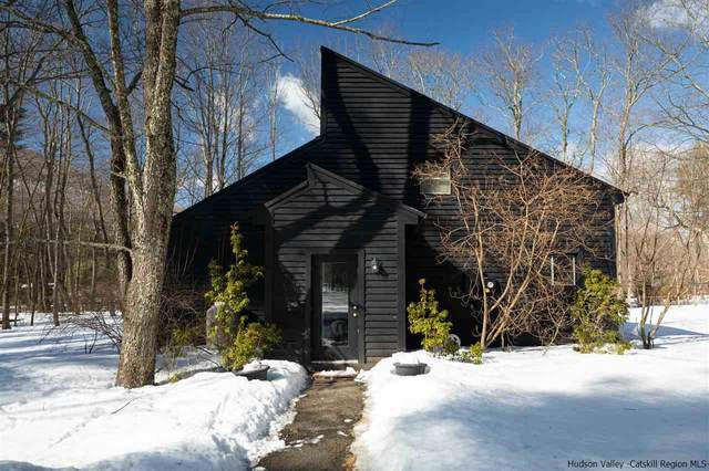 46 Sickler Road, Woodstock, NY 12448 (MLS #20210762) :: Barbara Carter Team