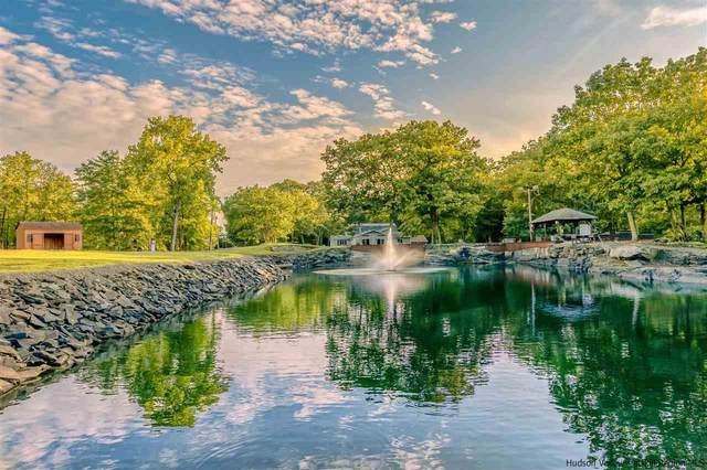 53 Stay Road, Saugerties, NY 12477 (MLS #20211465) :: Barbara Carter Team